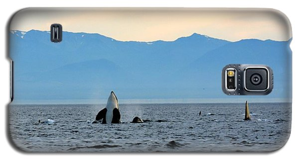 Galaxy S5 Case featuring the photograph Freedom Of Movement by Gayle Swigart