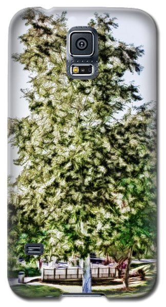 Freedom Tree Galaxy S5 Case