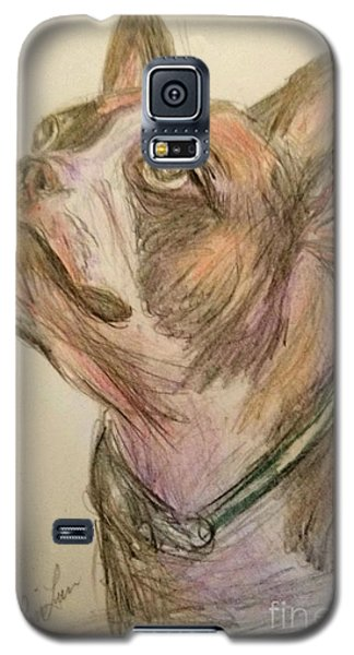 French Bull Dog Galaxy S5 Case