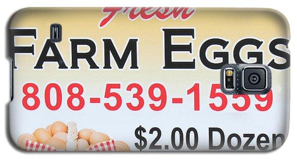 Galaxy S5 Case featuring the photograph Fresh Farm Eggs by Sylvia Thornton