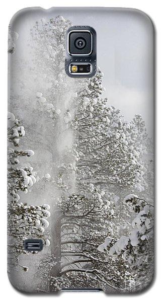 Fresh Snow Galaxy S5 Case