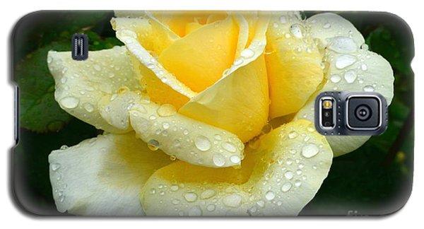 Fresh Sunshine Daydream Rose Galaxy S5 Case