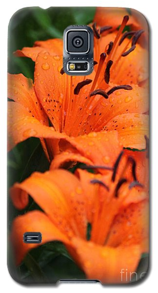 Freshly Showered Tiger Lilys Galaxy S5 Case