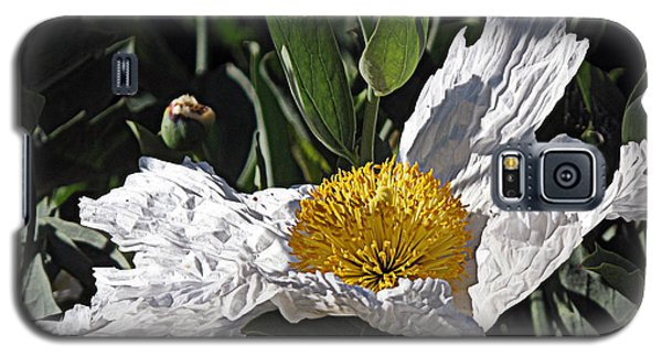 Galaxy S5 Case featuring the photograph Fried Egg Poppy by Suzy Piatt
