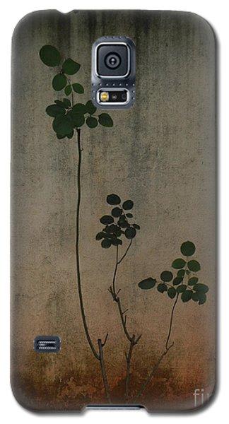 Friendless Rose Bush Galaxy S5 Case