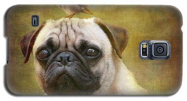Friends Like Pug And Bird Galaxy S5 Case by Barbara Orenya