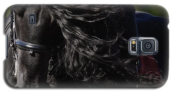 Friesian Beauty Galaxy S5 Case by Wes and Dotty Weber