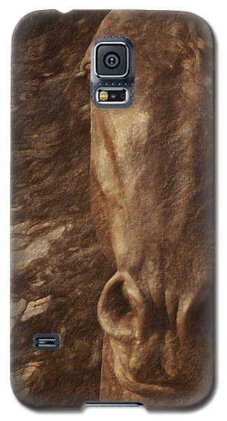 Friesian Spirit Galaxy S5 Case