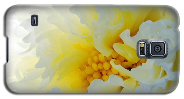 Galaxy S5 Case featuring the photograph Frilling by Wendy Wilton