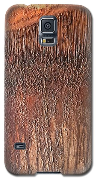 Galaxy S5 Case featuring the painting Fringe by Buck Buchheister