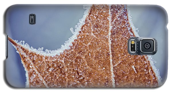Fringe Of Crystal Galaxy S5 Case by Julie Clements