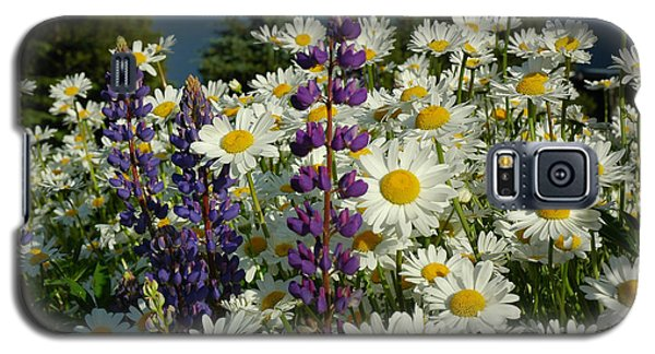 Galaxy S5 Case featuring the photograph Frisco Flowers by Lynn Bauer