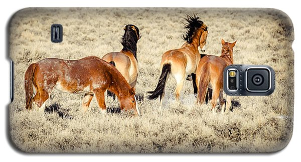 Frisky Mustangs Galaxy S5 Case by Yeates Photography