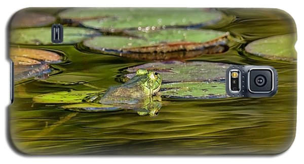 Frog And Lily Pad Galaxy S5 Case