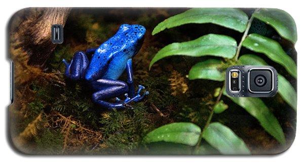 Frog Blues Galaxy S5 Case