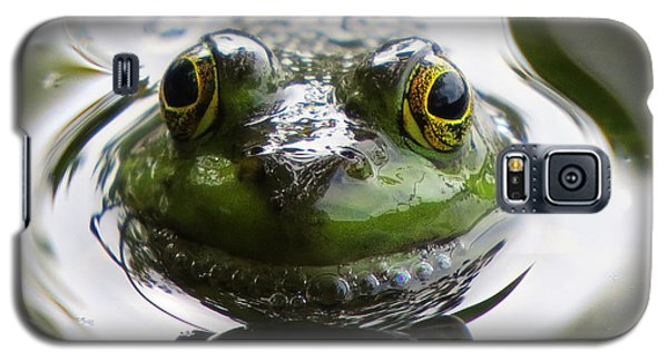 Galaxy S5 Case featuring the photograph Frog Kiss by Dianne Cowen
