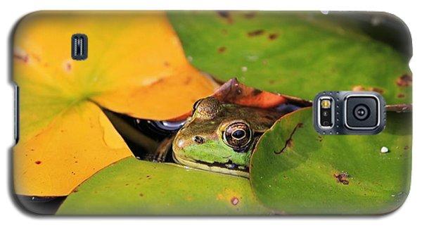 Frog Pond 3 Galaxy S5 Case