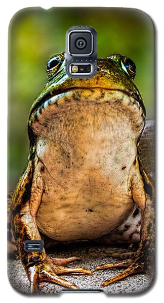 Frog Prince Or So He Thinks Galaxy S5 Case by Bob Orsillo