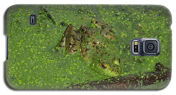 Galaxy S5 Case featuring the photograph Froggie by Robert Nickologianis