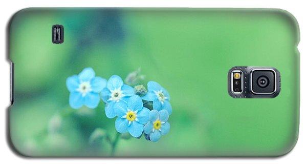 Froggy Galaxy S5 Case by Rachel Mirror