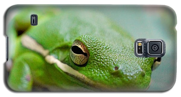 Galaxy S5 Case featuring the photograph Froggy Smile Squared by TK Goforth