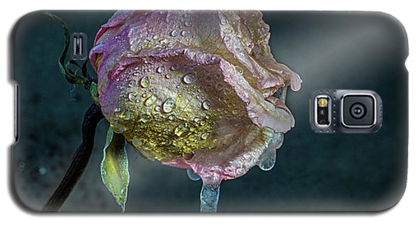 Galaxy S5 Case featuring the photograph Frosen Rose by Vladimir Kholostykh
