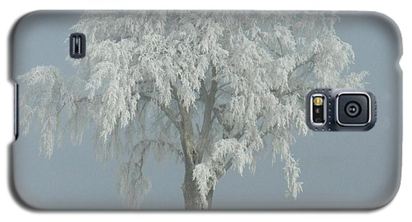 Galaxy S5 Case featuring the photograph Frost Covered Lone Tree by Penny Meyers