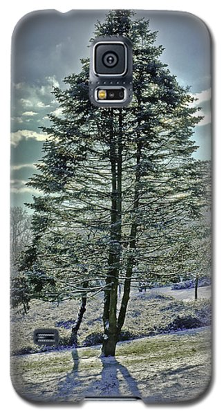 Galaxy S5 Case featuring the photograph Frost On Pine Tree by Gary Slawsky