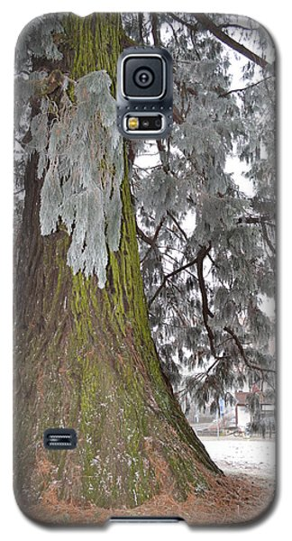 Galaxy S5 Case featuring the photograph Frost On The Leaves by Felicia Tica