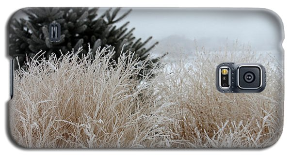 Frosted Grasses Galaxy S5 Case