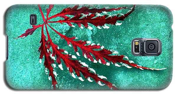 Frosted Japanese Maple Galaxy S5 Case