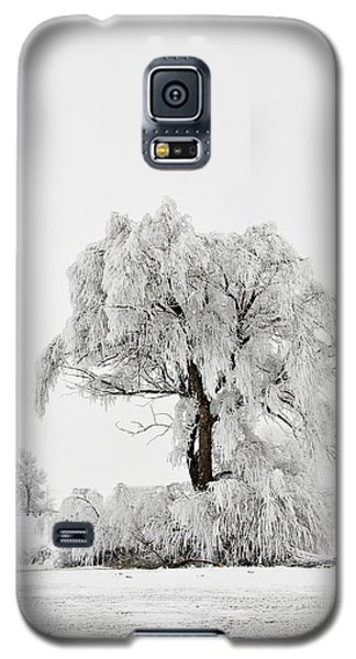 Frosted Galaxy S5 Case