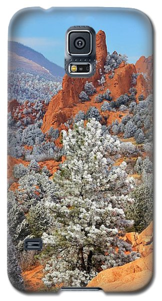 Frosted Wonderland 1 Galaxy S5 Case
