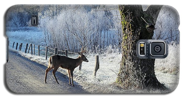 Frosty Cades Cove II Galaxy S5 Case