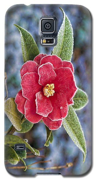 Frosty Camellia - Phone Case Design Galaxy S5 Case