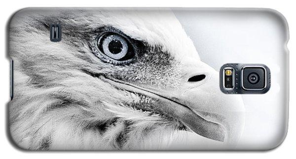 Frosty Eagle Galaxy S5 Case by Shane Holsclaw