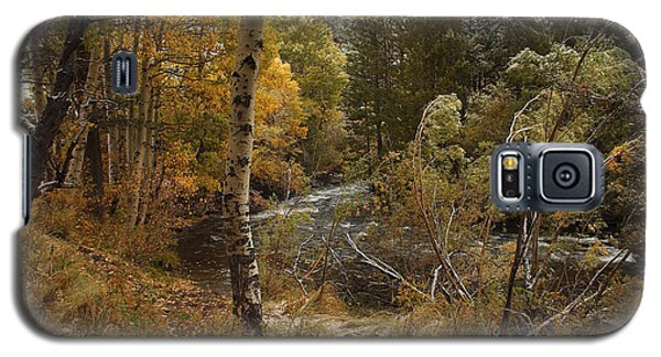 Galaxy S5 Case featuring the photograph Frosty Fall  Morning by Duncan Selby
