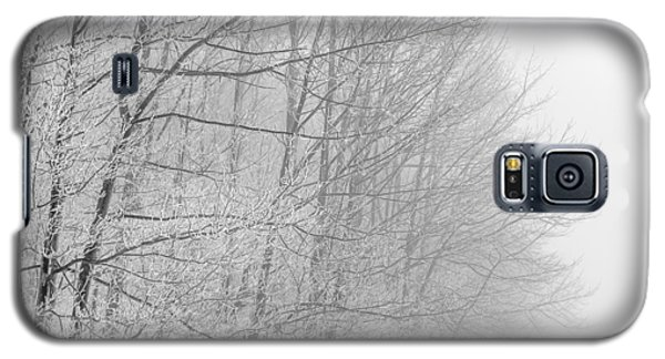 Frosty Forest Frontier Galaxy S5 Case