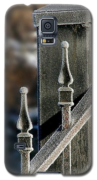 Frosty Gate Galaxy S5 Case