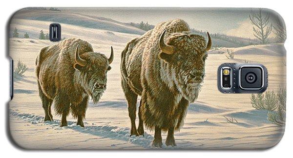 Frosty Morning - Buffalo Galaxy S5 Case by Paul Krapf