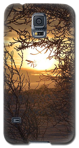 Frosty Sunrise Galaxy S5 Case