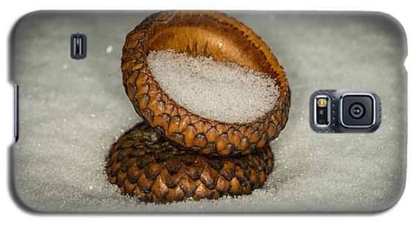 Frozen Acorn Cupule Galaxy S5 Case by Paul Freidlund