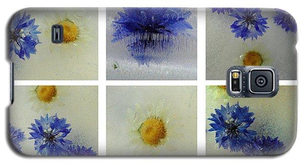 Galaxy S5 Case featuring the photograph Frozen Blue by Randi Grace Nilsberg