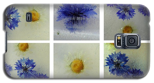 Frozen Blue Galaxy S5 Case