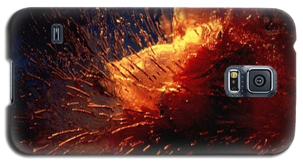 Galaxy S5 Case featuring the photograph Frozen Carnation by Randi Grace Nilsberg