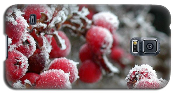 Galaxy S5 Case featuring the photograph Frozen Crimson Close Up by Heidi Manly