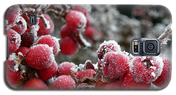 Galaxy S5 Case featuring the photograph Frozen Crimson by Heidi Manly