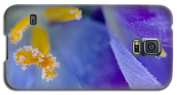 Frozen Crocus Galaxy S5 Case