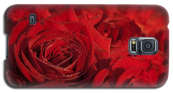 Frozen Dew On Red Roses Galaxy S5 Case
