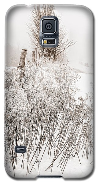 Frozen Fog On A Hedgerow - Bw Galaxy S5 Case